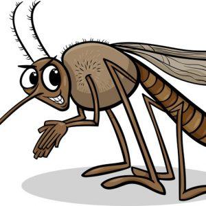Szúnyog, Kullancs
